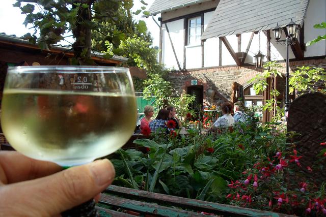 Weinbau an der Untermosel …
